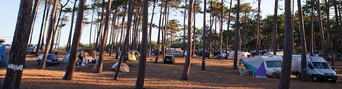 camping 4 étoiles ile de ré